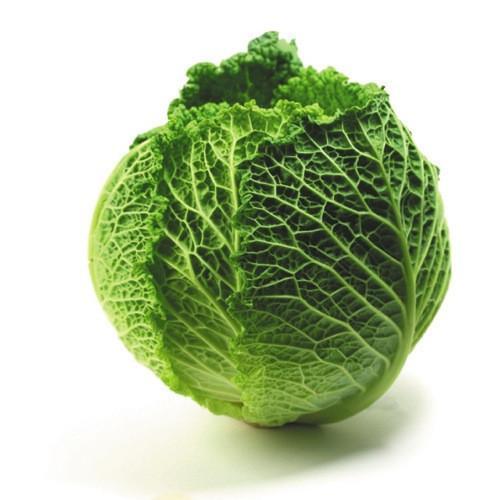 Organic Savoy Cabbage x1